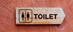 Trans Fear Goes Beyond Bathroom Policies